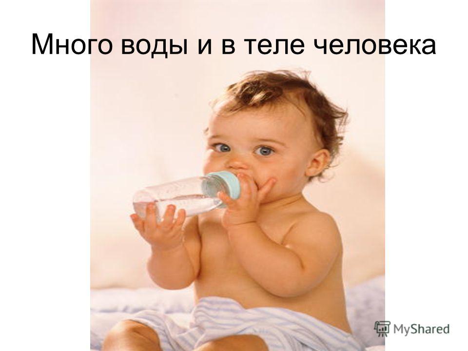Много воды и в теле человека