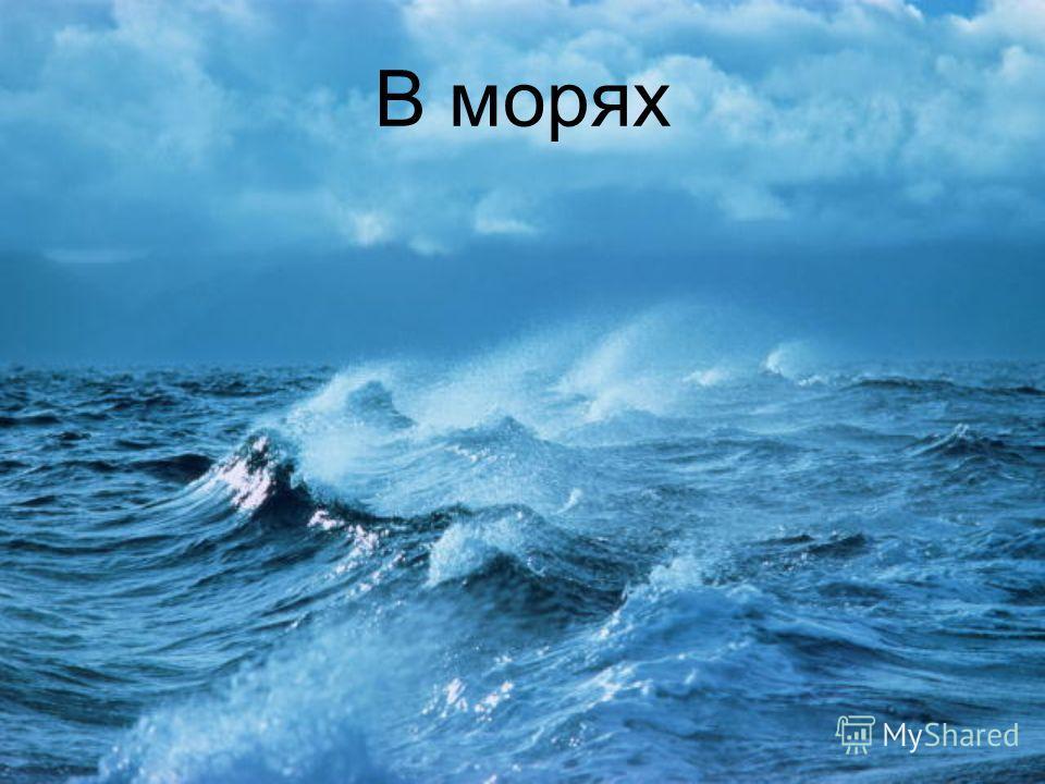 В морях