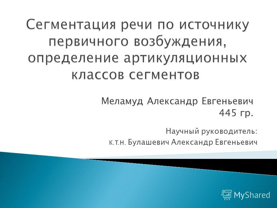 Меламуд Александр Евгеньевич 445 гр. Научный руководитель: к.т.н. Булашевич Александр Евгеньевич