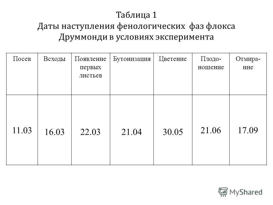 Таблица 1 Даты наступления фенологических фаз флокса Друммонди в условиях эксперимента ПосевВсходыПоявление первых листьев БутонизацияЦветениеПлодо- ношение Отмира- ние 11.03 16.0322.0321.0430.05 21.0617.09