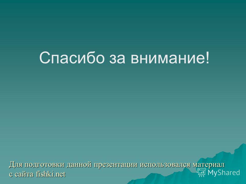 Для подготовки данной презентации использовался материал с сайта fishki.net Спасибо за внимание!