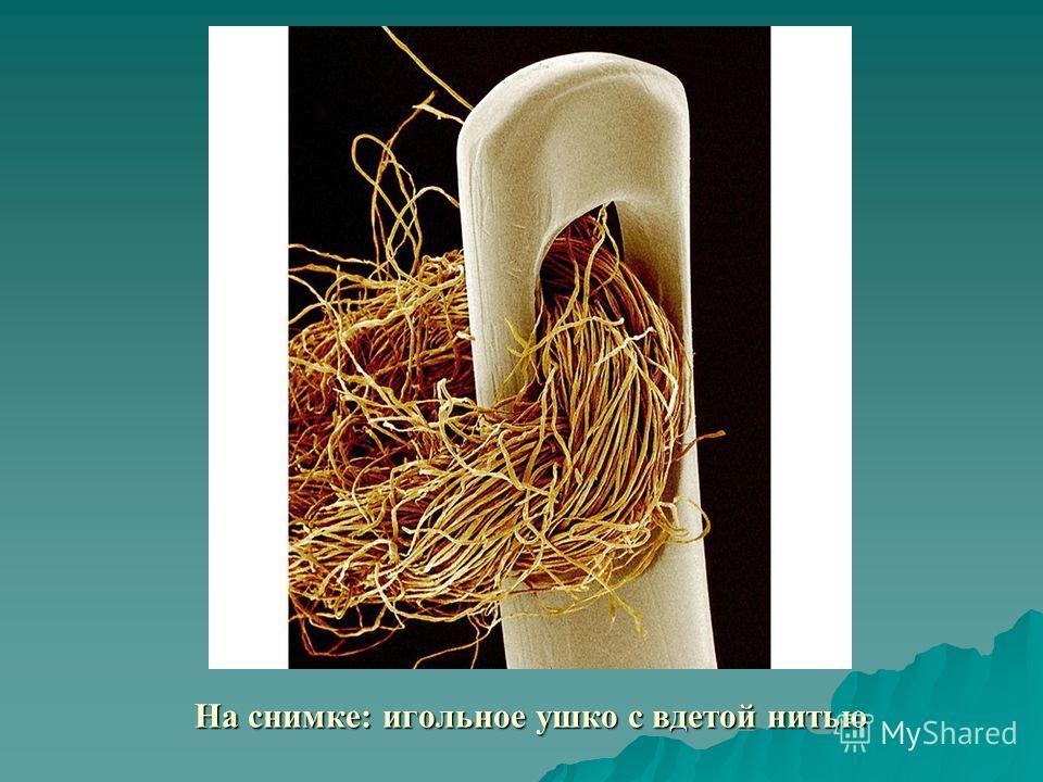 На снимке: игольное ушко с вдетой нитью