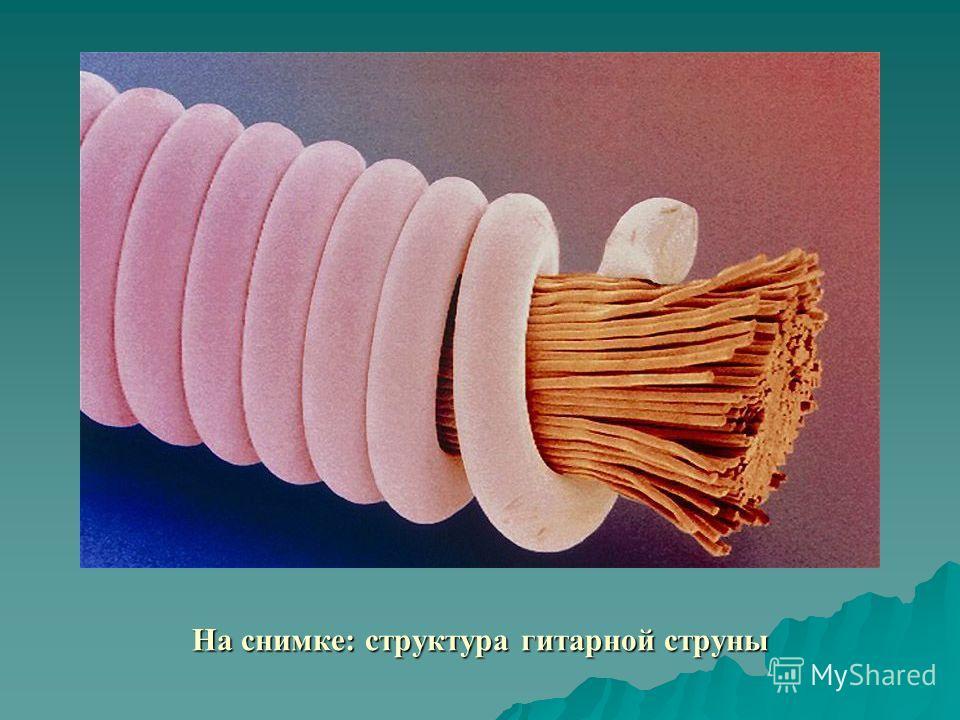 На снимке: структура гитарной струны