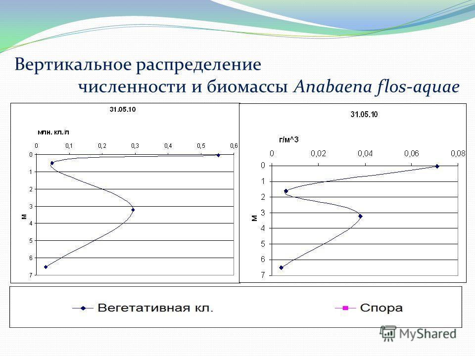 Вертикальное распределение численности и биомассы Anabaena flos-aquae