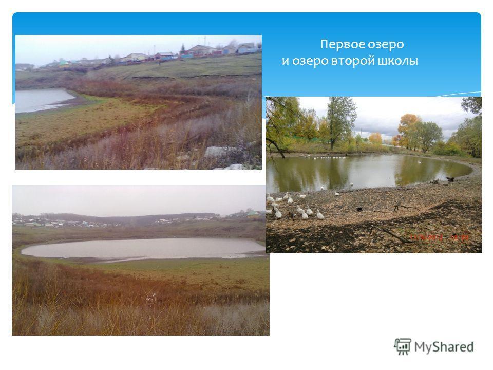 Первое озеро и озеро второй школы