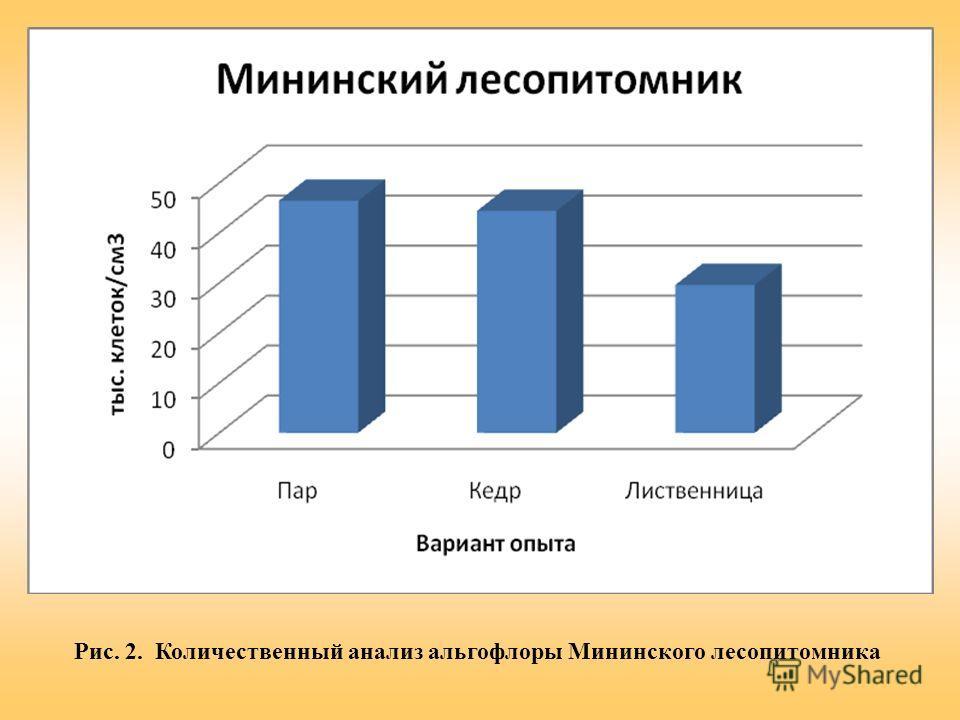 Рис. 2. Количественный анализ альгофлоры Мининского лесопитомника