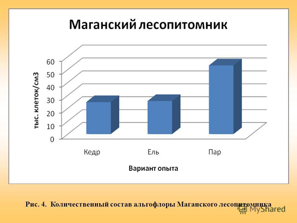 Рис. 4. Количественный состав альгофлоры Маганского лесопитомника