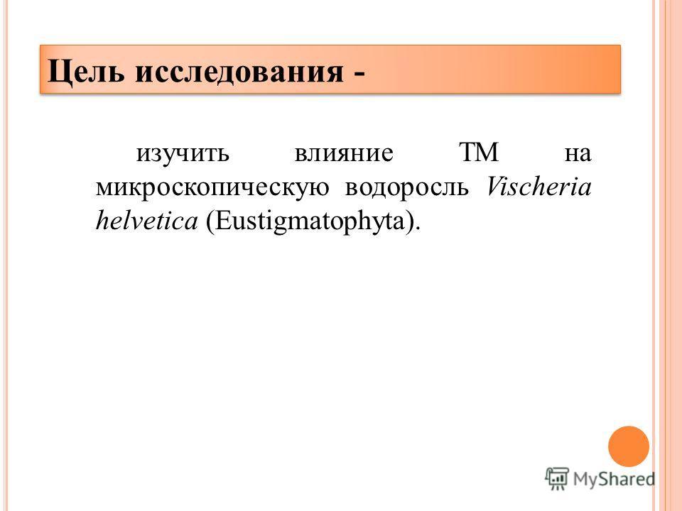 Цель исследования - изучить влияние ТМ на микроскопическую водоросль Vischeria helvetica (Eustigmatophyta).