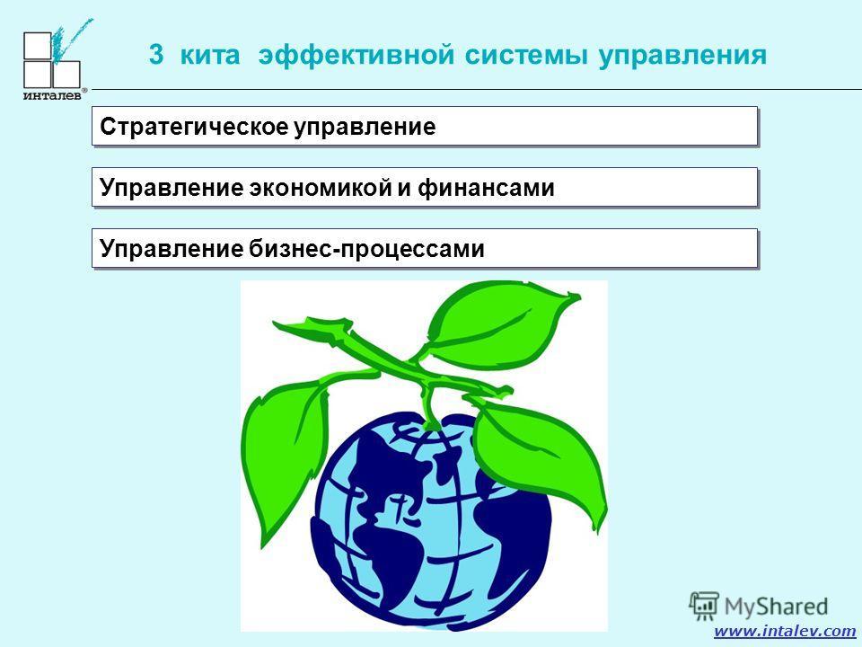 www.intalev.com 3 кита эффективной системы управления Стратегическое управление Управление экономикой и финансами Управление бизнес-процессами