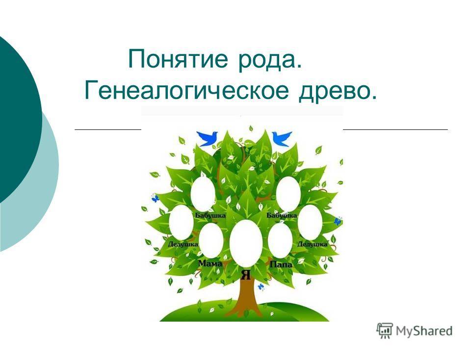 Понятие рода. Генеалогическое древо.