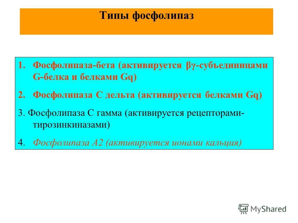 Типы фосфолипаз 1.Фосфолипаза-бета (активируется βγ-субъединицами G-белка и белками Gq) 2.Фосфолипаза С дельта (активируется белками Gq) 3. Фосфолипаза С гамма (активируется рецепторами- тирозинкиназами) 4. Фосфолипаза А2 (активируется ионами кальция