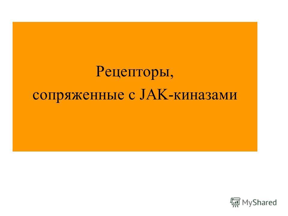 Рецепторы, сопряженные с JAK-киназами