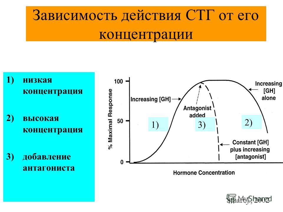 Зависимость действия СТГ от его концентрации Stuart J., 2002 1)низкая концентрация 2)высокая концентрация 3)добавление антагониста 1)3) 2)