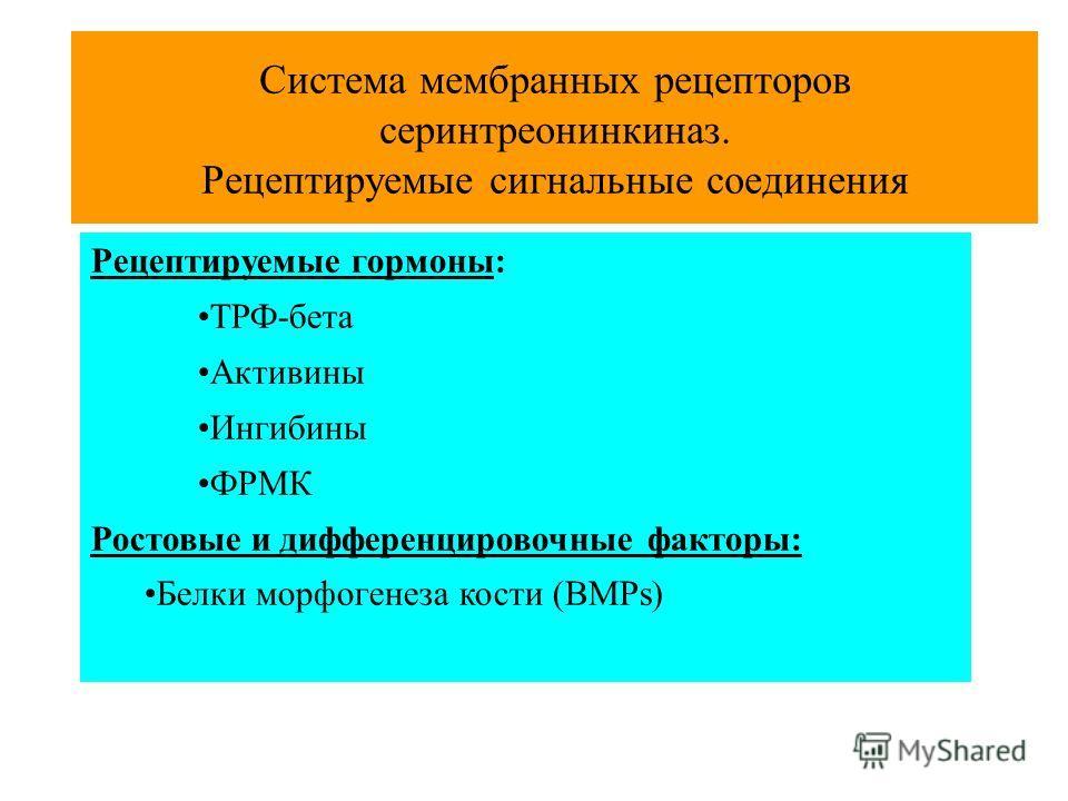 Система мембранных рецепторов серинтреонинкиназ. Рецептируемые сигнальные соединения Рецептируемые гормоны: ТРФ-бета Активины Ингибины ФРМК Ростовые и дифференцировочные факторы: Белки морфогенеза кости (BMPs)