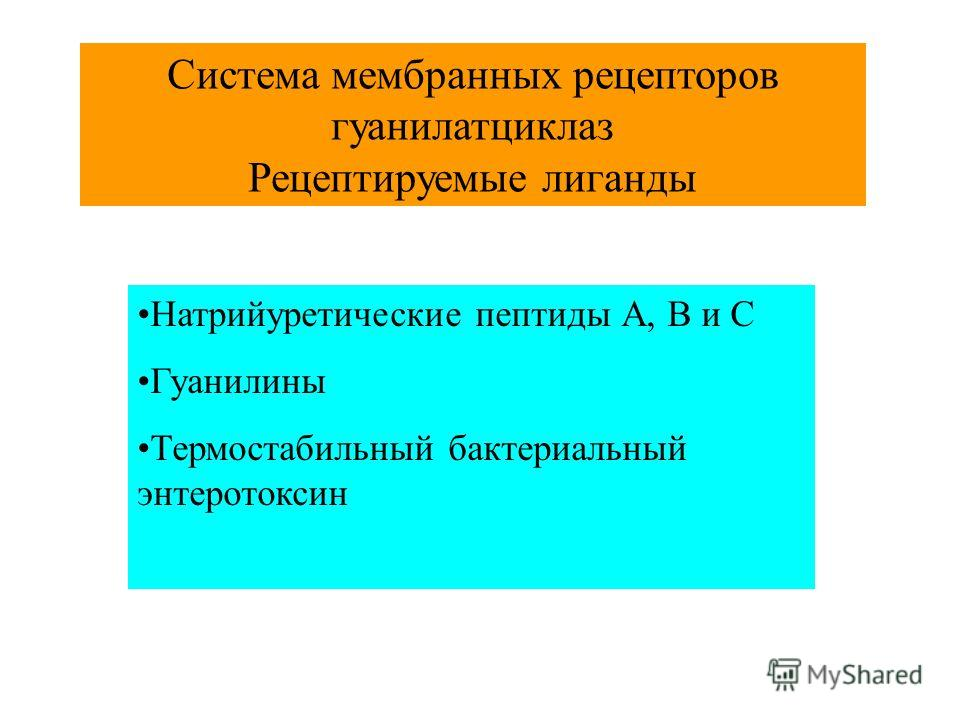 Система мембранных рецепторов гуанилатциклаз Рецептируемые лиганды Натрийуретические пептиды А, В и С Гуанилины Термостабильный бактериальный энтеротоксин