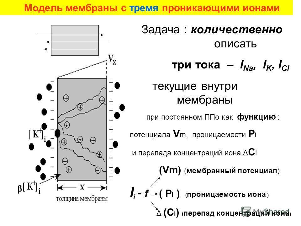 Задача : количественно описать три тока – I Na, I K, I Cl текущие внутри мембраны при постоянном ППо как функцию : потенциала V m, проницаемости P i и перепада концентраций иона Δ С i (Vm) (мембранный потенциал) I i = f ( P i ) ( проницаемость иона )