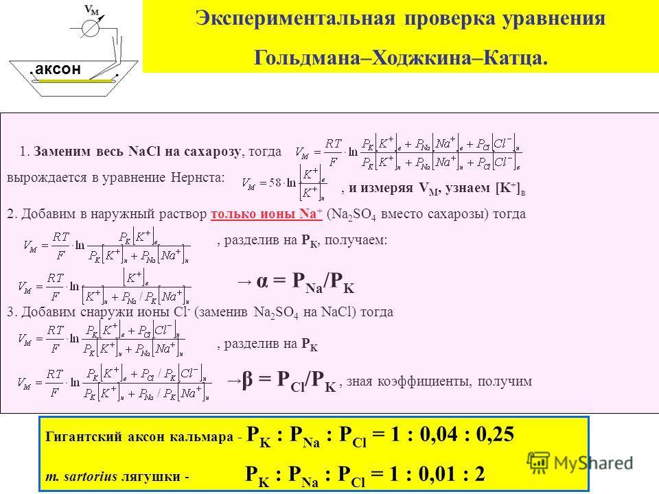 Экспериментальная проверка уравнения Гольдмана–Ходжкина–Катца. 1. Заменим весь NaCl на сахарозу, тогда вырождается в уравнение Нернста:, и измеряя V М, узнаем [K + ] в 2. Добавим в наружный раствор только ионы Na + (Na 2 SO 4 вместо сахарозы) тогда,