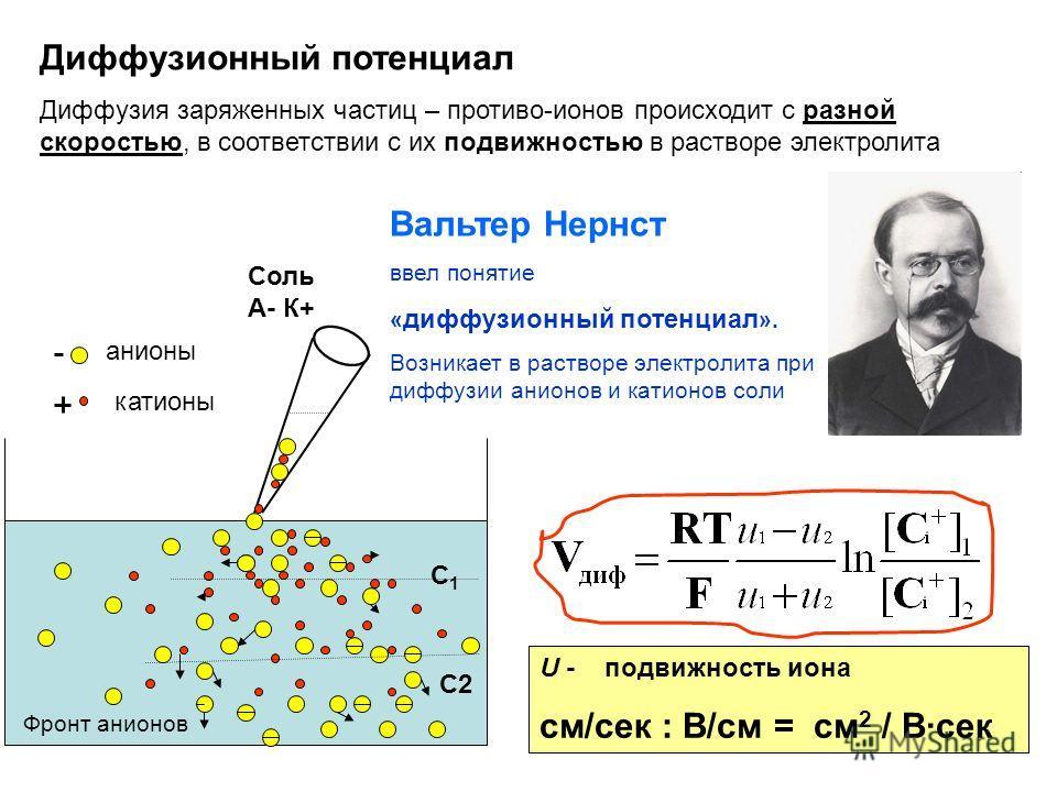 Диффузионный потенциал Диффузия заряженных частиц – противо-ионов происходит с разной скоростью, в соответствии с их подвижностью в растворе электролита С1С1 С2 Вальтер Нернст ввел понятие « диффузионный потенциал ». Возникает в растворе электролита