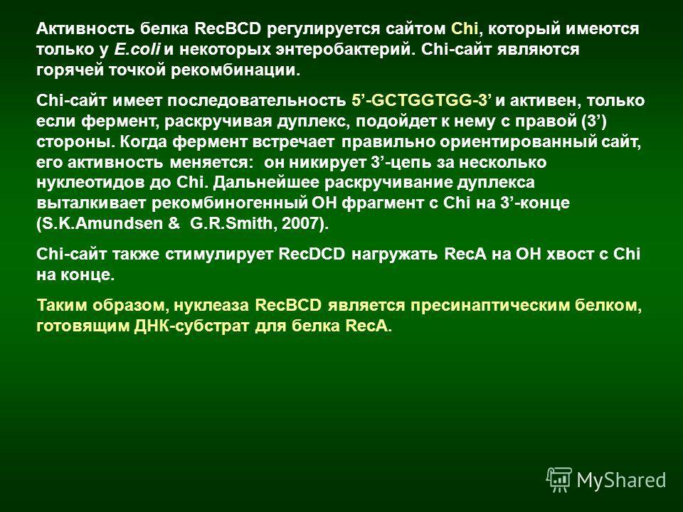 Активность белка RecBCD регулируется сайтом Chi, который имеются только у E.coli и некоторых энтеробактерий. Chi-сайт являются горячей точкой рекомбинации. Сhi-сайт имеет последовательность 5-GCTGGTGG-3 и активен, только если фермент, раскручивая дуп