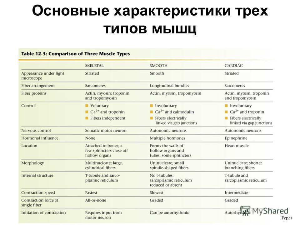 Основные характеристики трех типов мышц Table 12-3: Comparison of Three Muscle Types