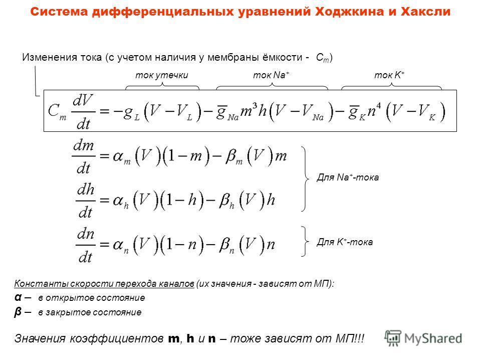 Система дифференциальных уравнений Ходжкина и Хаксли Изменения тока (с учетом наличия у мембраны ёмкости - C m ) ток утечкиток Na + ток K + Для Na + -тока Для K + -тока Константы скорости перехода каналов (их значения - зависят от МП): α – в открытое