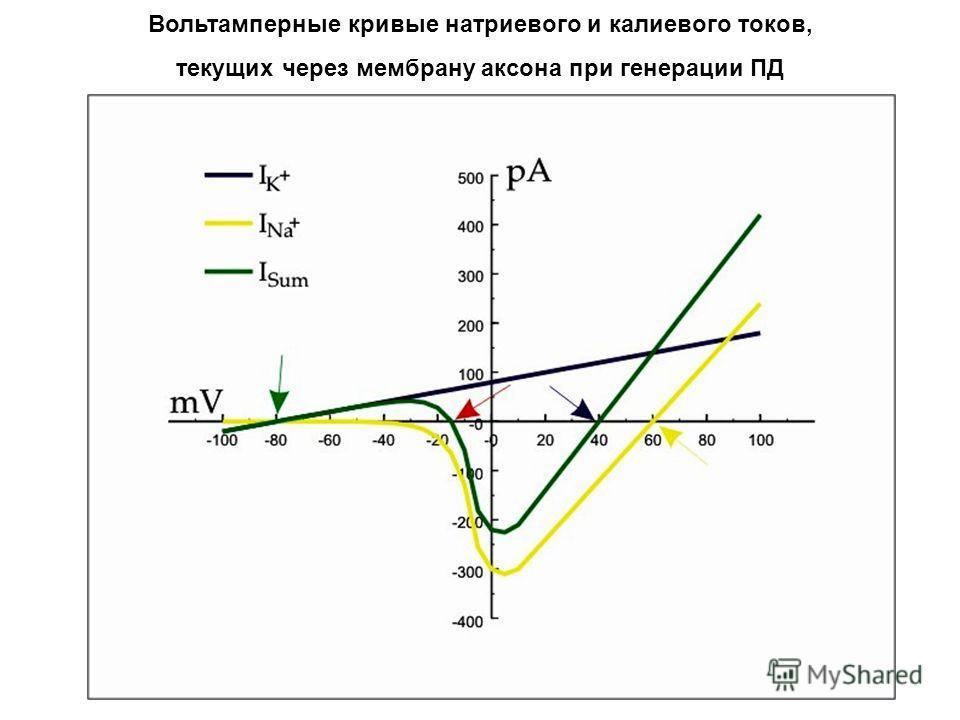 Вольтамперные кривые натриевого и калиевого токов, текущих через мембрану аксона при генерации ПД