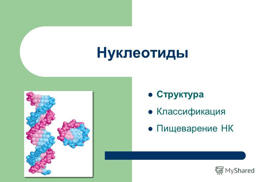 Нуклеотиды Структура Классификация Пищеварение НК
