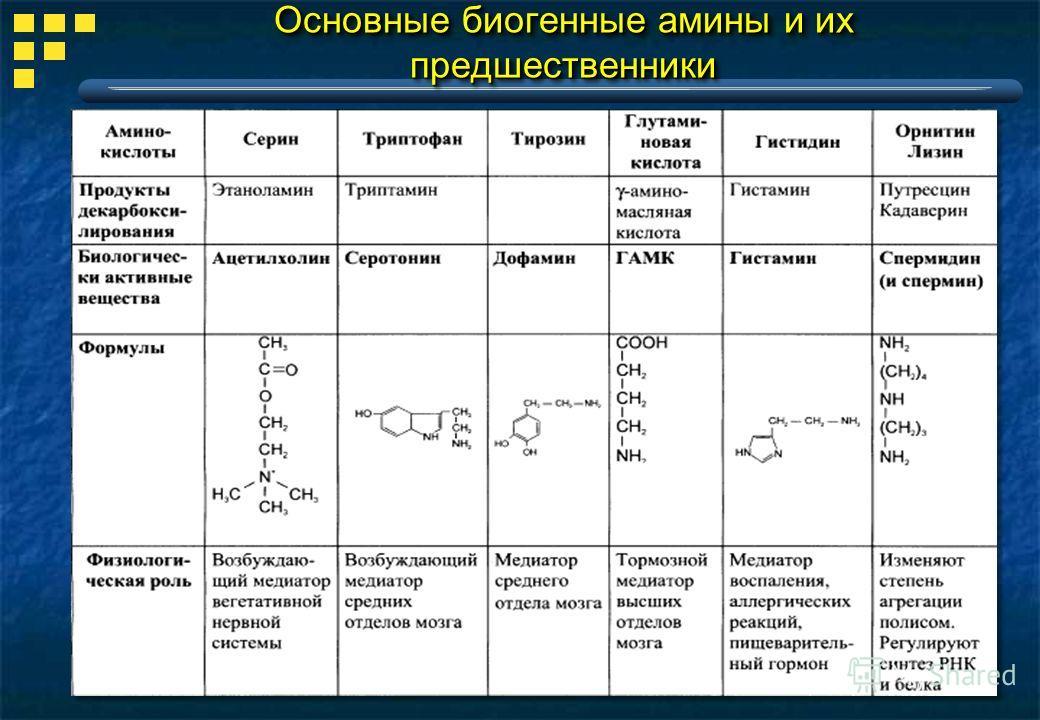 Основные биогенные амины и их предшественники