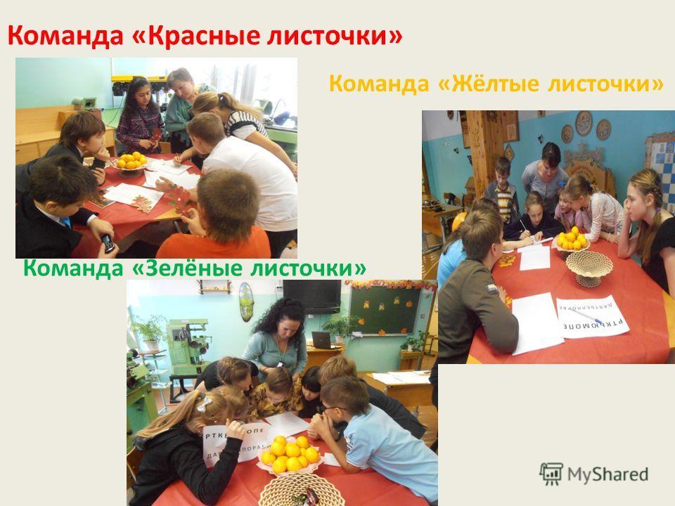 Команда «Красные листочки» Команда «Жёлтые листочки» Команда «Зелёные листочки»