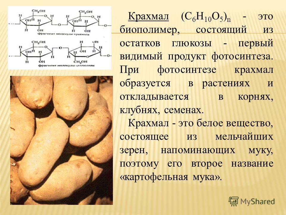 Крахмал (C 6 Н 10 О 5 ) n - это биополимер, состоящий из остатков глюкозы - первый видимый продукт фотосинтеза. При фотосинтезе крахмал образуется в растениях и откладывается в корнях, клубнях, семенах. Крахмал - это белое вещество, состоящее из мель