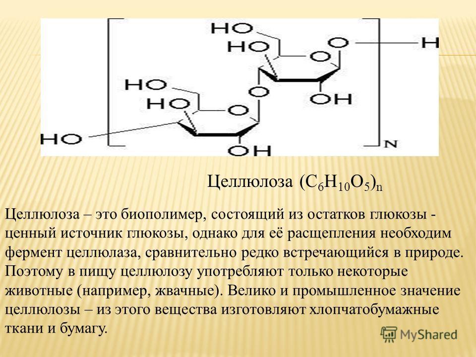 Целлюлоза (С 6 Н 10 О 5 ) n Целлюлоза – это биополимер, состоящий из остатков глюкозы - ценный источник глюкозы, однако для её расщепления необходим фермент целлюлаза, сравнительно редко встречающийся в природе. Поэтому в пищу целлюлозу употребляют т
