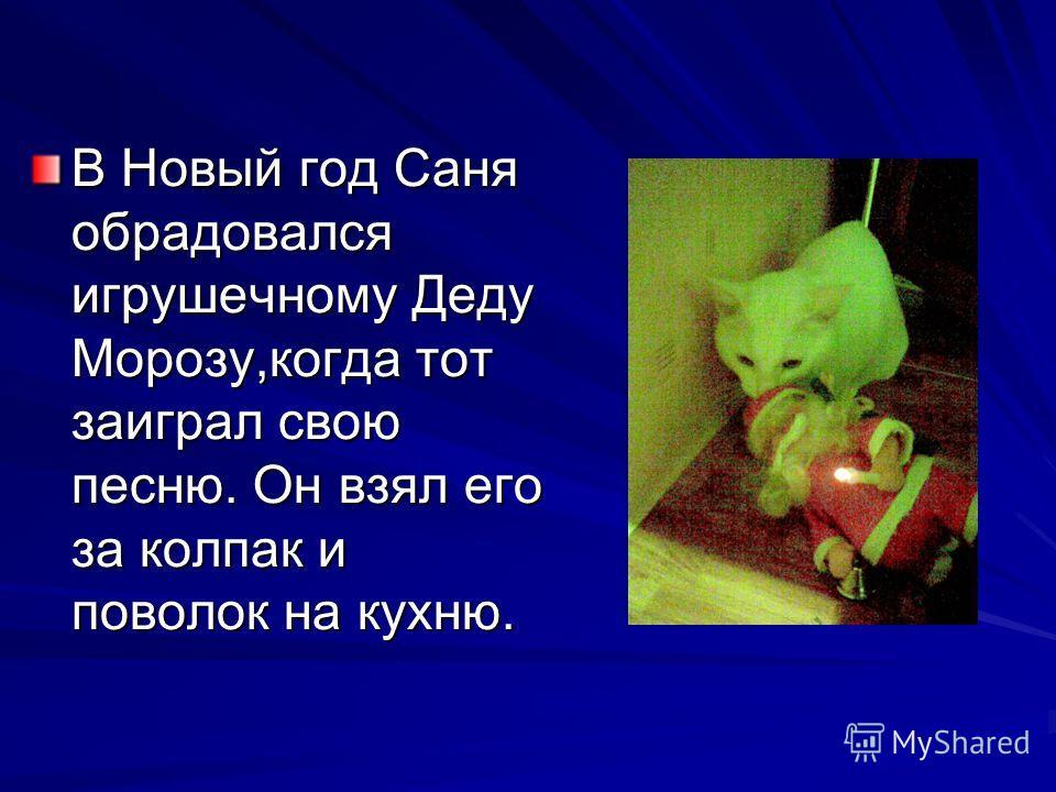 В Новый год Саня обрадовался игрушечному Деду Морозу,когда тот заиграл свою песню. Он взял его за колпак и поволок на кухню.