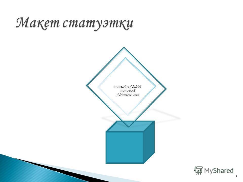 3 САМЫЙ ЛУЧШИЙ МОЛОДОЙ УЧИТЕЛЬ-2010 3