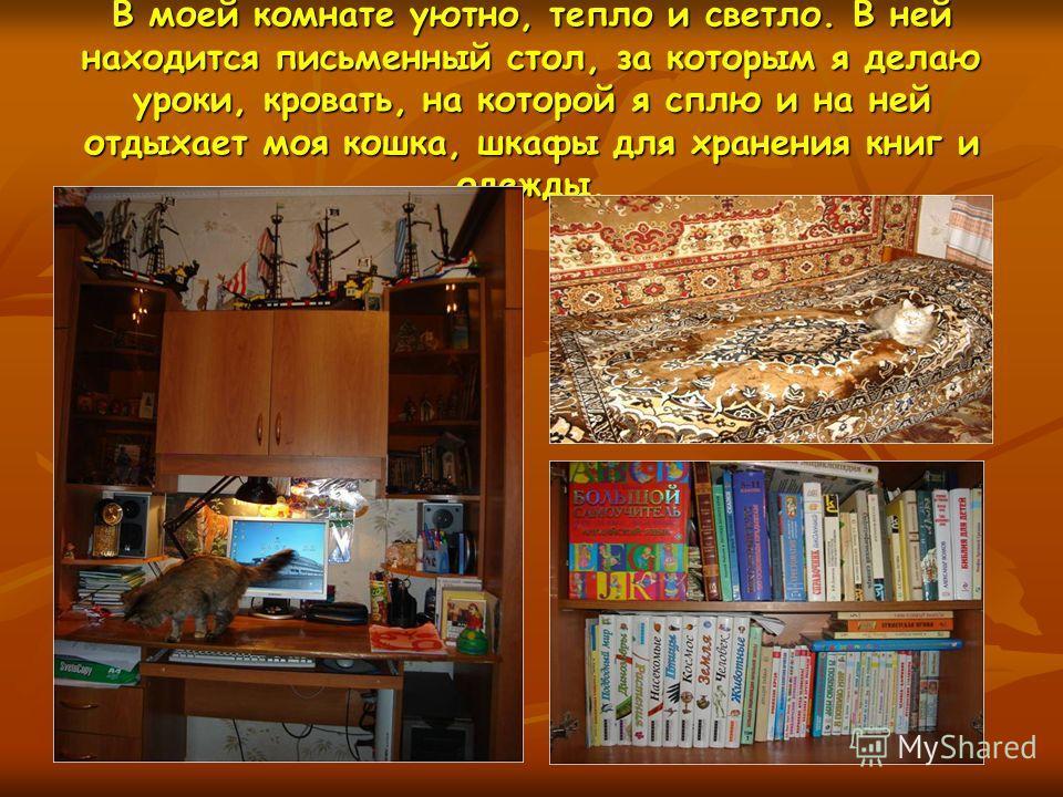 В моей комнате уютно, тепло и светло. В ней находится письменный стол, за которым я делаю уроки, кровать, на которой я сплю и на ней отдыхает моя кошка, шкафы для хранения книг и одежды.