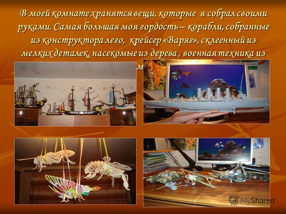 В моей комнате хранятся вещи, которые я собрал своими руками. Самая большая моя гордость – корабли, собранные из конструктора лего, крейсер «Варяг», склеенный из мелких деталек, насекомые из дерева, военная техника из бумаги.