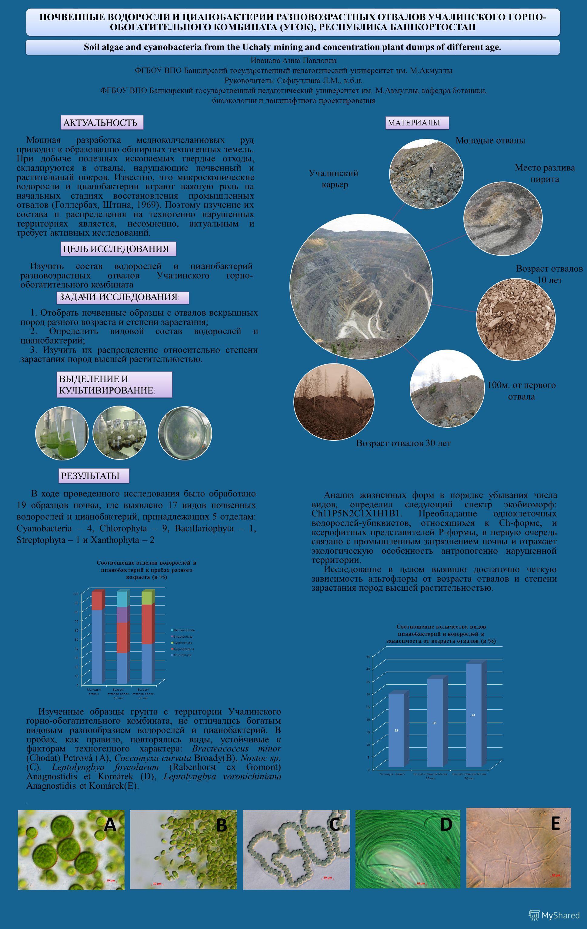Soil algae and cyanobacteria from the Uchaly mining and concentration plant dumps of different age. ПОЧВЕННЫЕ ВОДОРОСЛИ И ЦИАНОБАКТЕРИИ РАЗНОВОЗРАСТНЫХ ОТВАЛОВ УЧАЛИНСКОГО ГОРНО- ОБОГАТИТЕЛЬНОГО КОМБИНАТА (УГОК), РЕСПУБЛИКА БАШКОРТОСТАН Иванова Анна
