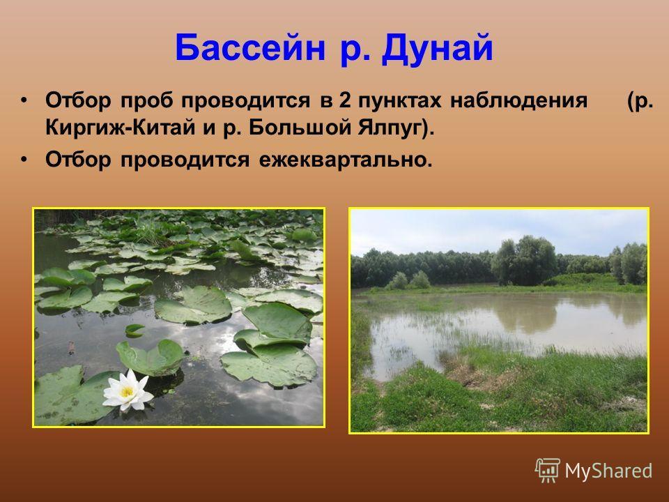 Бассейн р. Дунай Отбор проб проводится в 2 пунктах наблюдения (р. Киргиж-Китай и р. Большой Ялпуг). Отбор проводится ежеквартально.