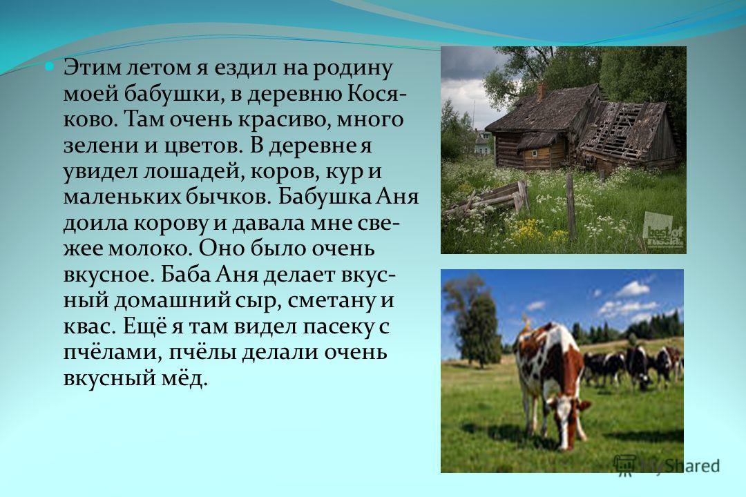 Этим летом я ездил на родину моей бабушки, в деревню Кося- ково. Там очень красиво, много зелени и цветов. В деревне я увидел лошадей, коров, кур и маленьких бычков. Бабушка Аня доила корову и давала мне све- жее молоко. Оно было очень вкусное. Баба