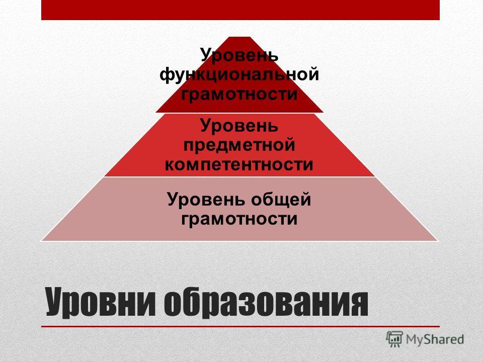 Уровни образования Уровень функциональной грамотности Уровень предметной компетентности Уровень общей грамотности