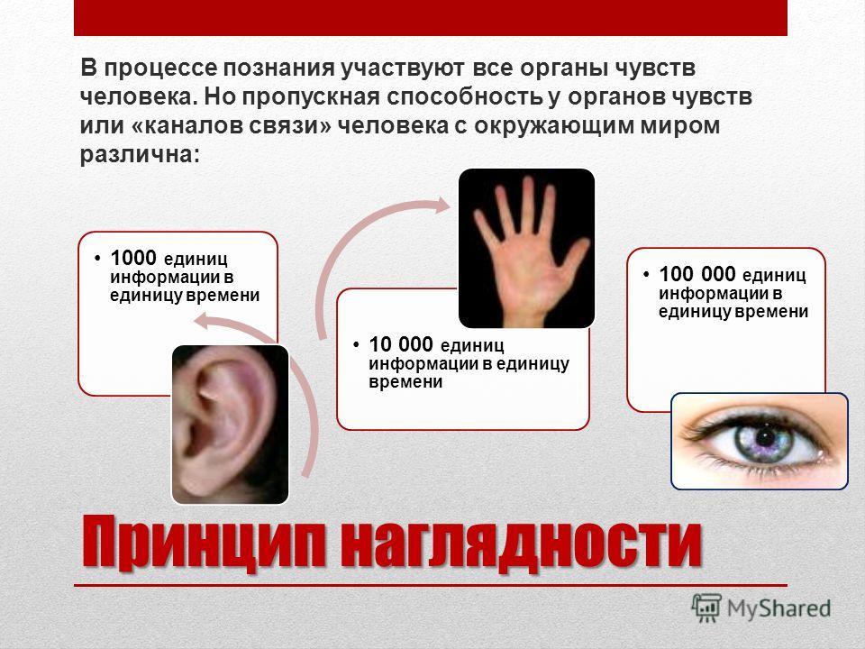 Принцип наглядности В процессе познания участвуют все органы чувств человека. Но пропускная способность у органов чувств или «каналов связи» человека с окружающим миром различна: 1000 единиц информации в единицу времени 10 000 единиц информации в еди