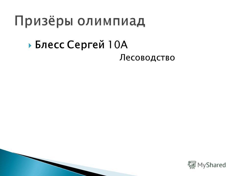Блесс Сергей 10А Лесоводство