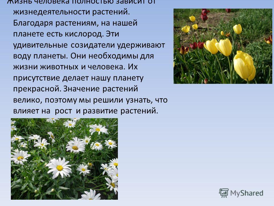 Жизнь человека полностью зависит от жизнедеятельности растений. Благодаря растениям, на нашей планете есть кислород. Эти удивительные созидатели удерживают воду планеты. Они необходимы для жизни животных и человека. Их присутствие делает нашу планету