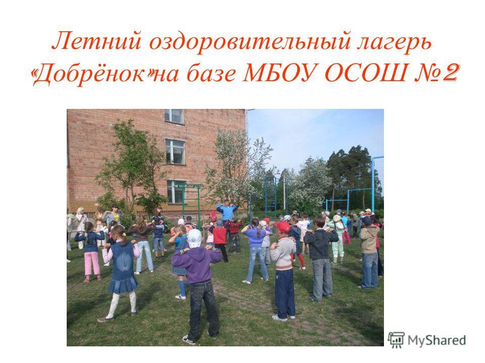 Летний оздоровительный лагерь « Добрёнок » на базе МБОУ ОСОШ 2