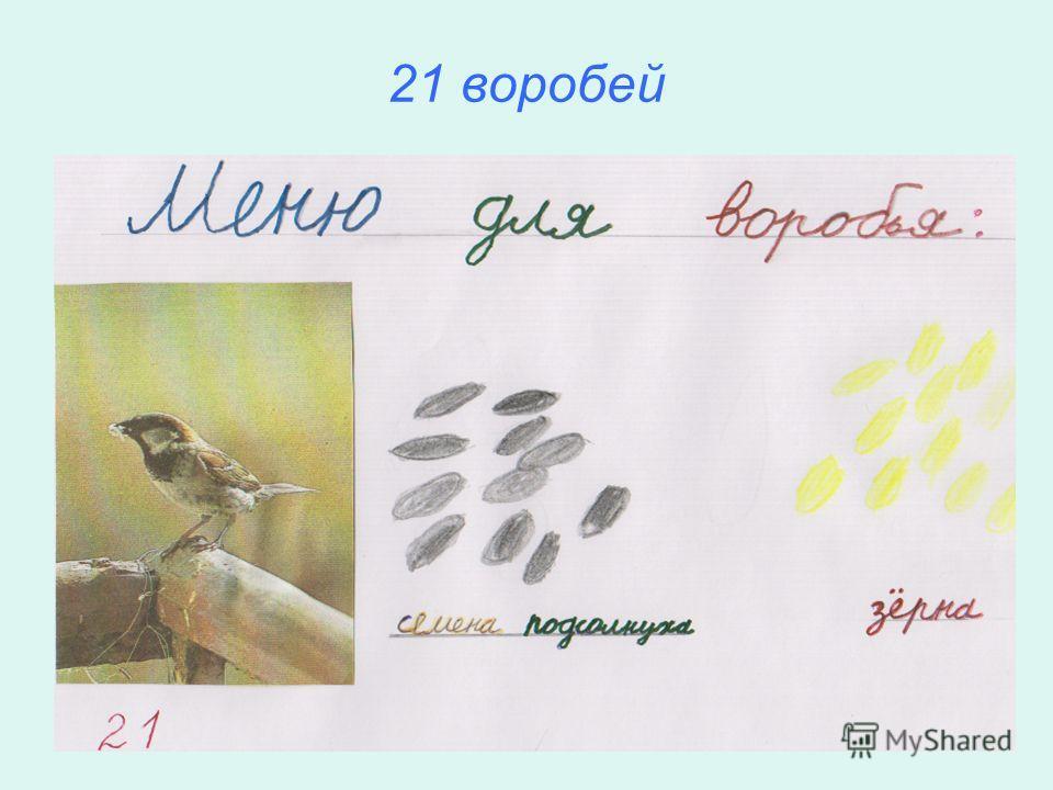 36 синиц