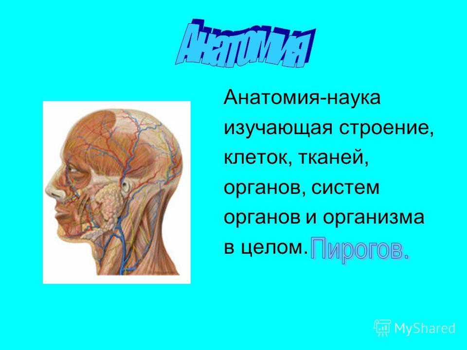 Анатомия-наука изучающая строение, клеток, тканей, органов, систем органов и организма в целом.