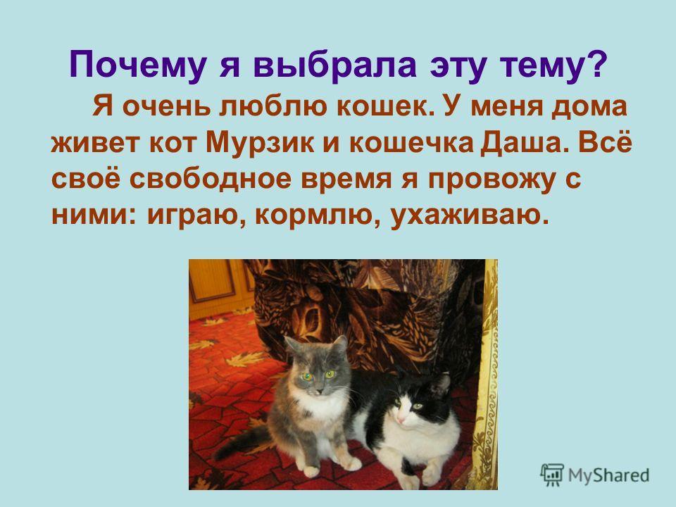 Почему я выбрала эту тему? Я очень люблю кошек. У меня дома живет кот Мурзик и кошечка Даша. Всё своё свободное время я провожу с ними: играю, кормлю, ухаживаю.
