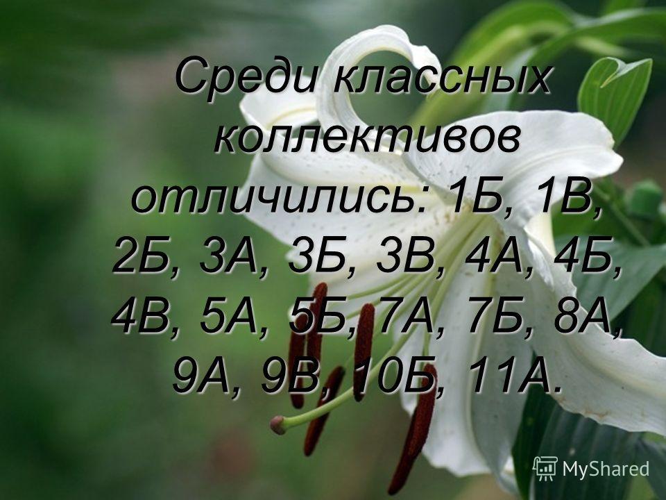 Среди классных коллективов отличились: 1Б, 1В, 2Б, 3А, 3Б, 3В, 4А, 4Б, 4В, 5А, 5Б, 7А, 7Б, 8А, 9А, 9В, 10Б, 11А. Среди классных коллективов отличились: 1Б, 1В, 2Б, 3А, 3Б, 3В, 4А, 4Б, 4В, 5А, 5Б, 7А, 7Б, 8А, 9А, 9В, 10Б, 11А.
