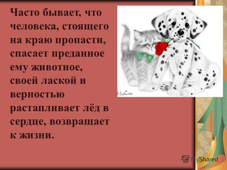 Часто бывает, что человека, стоящего на краю пропасти, спасает преданное ему животное, своей лаской и верностью растапливает лёд в сердце, возвращает к жизни.
