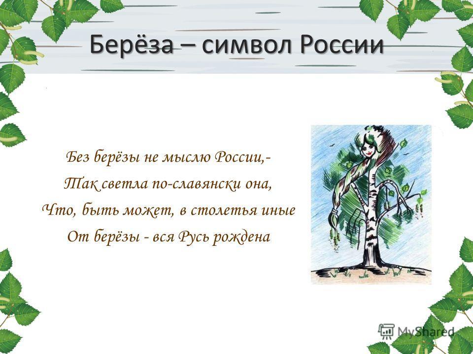 Берёза – символ России Без берёзы не мыслю России,- Так светла по-славянски она, Что, быть может, в столетья иные От берёзы - вся Русь рождена