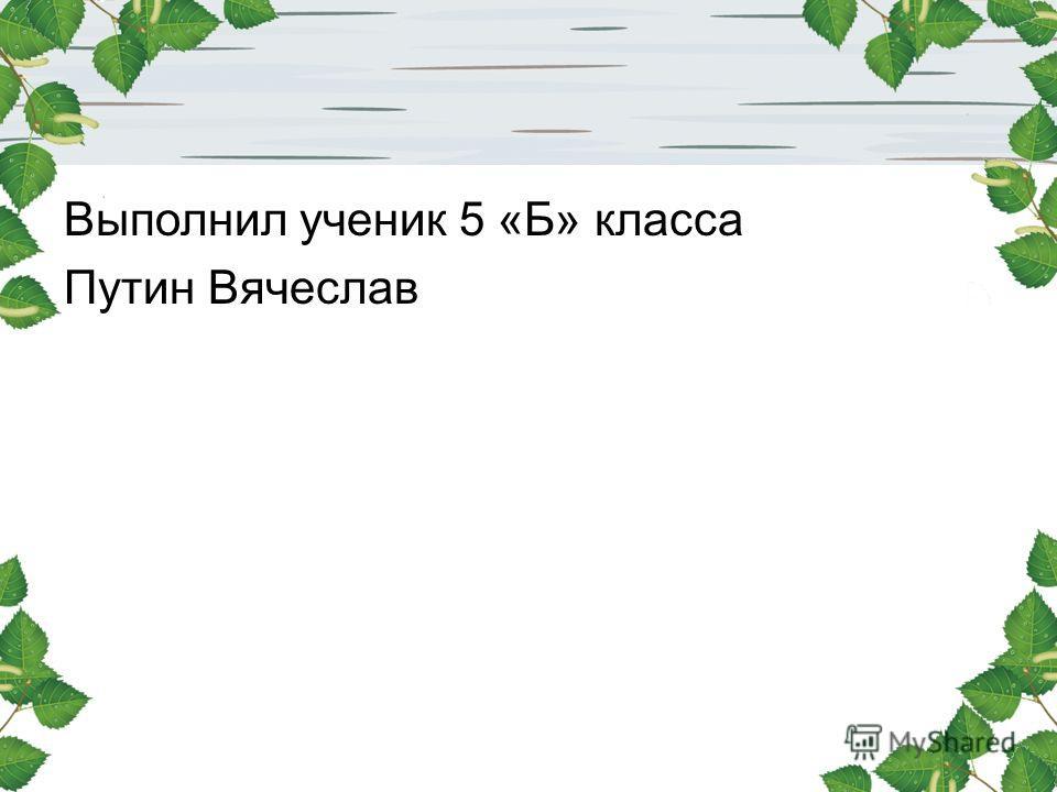 Выполнил ученик 5 «Б» класса Путин Вячеслав